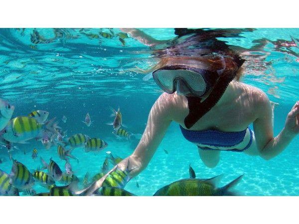 coral island in phuket